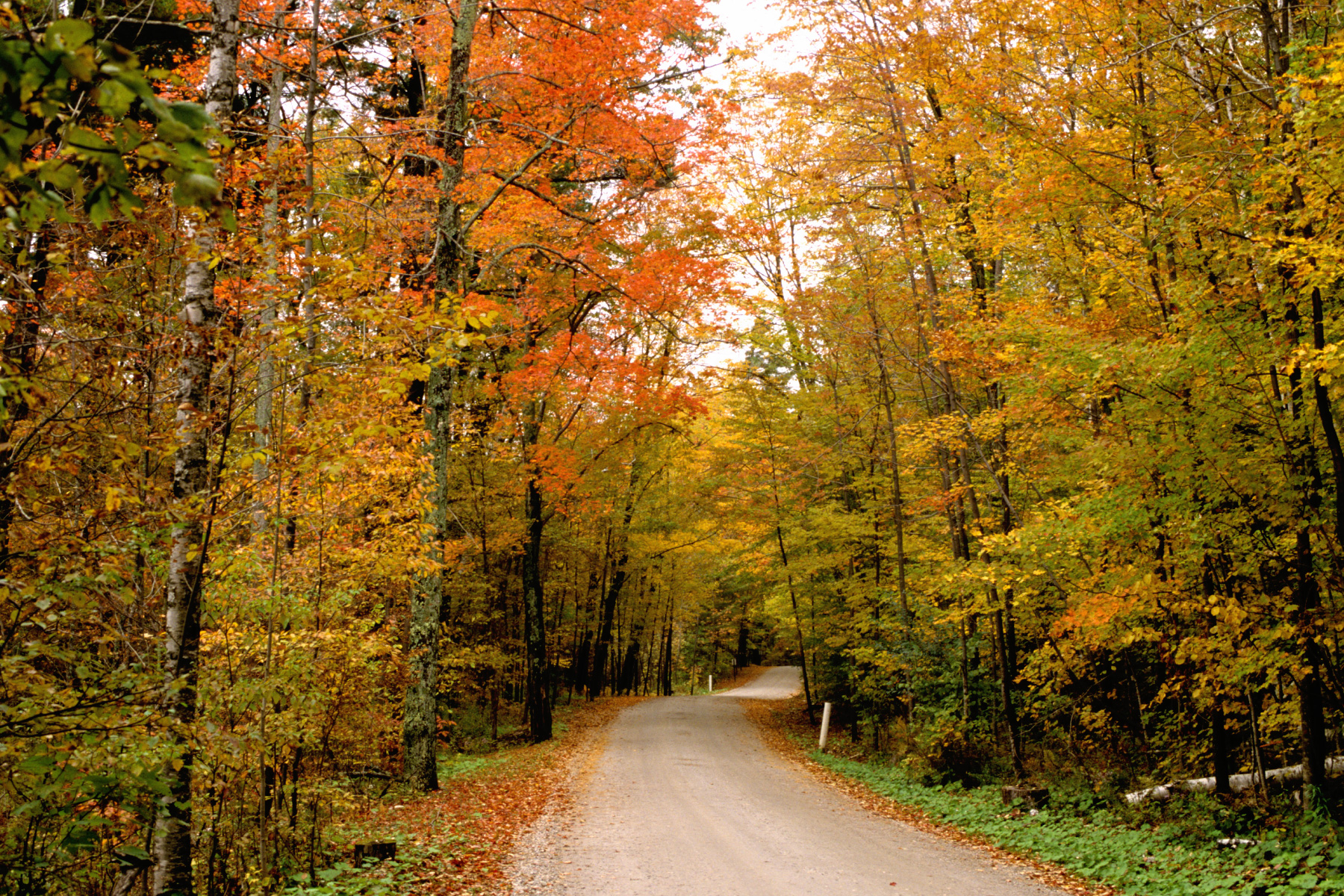 vermont country road in the fall