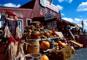 Stewart Farm Stand in Presque Isle, Maine