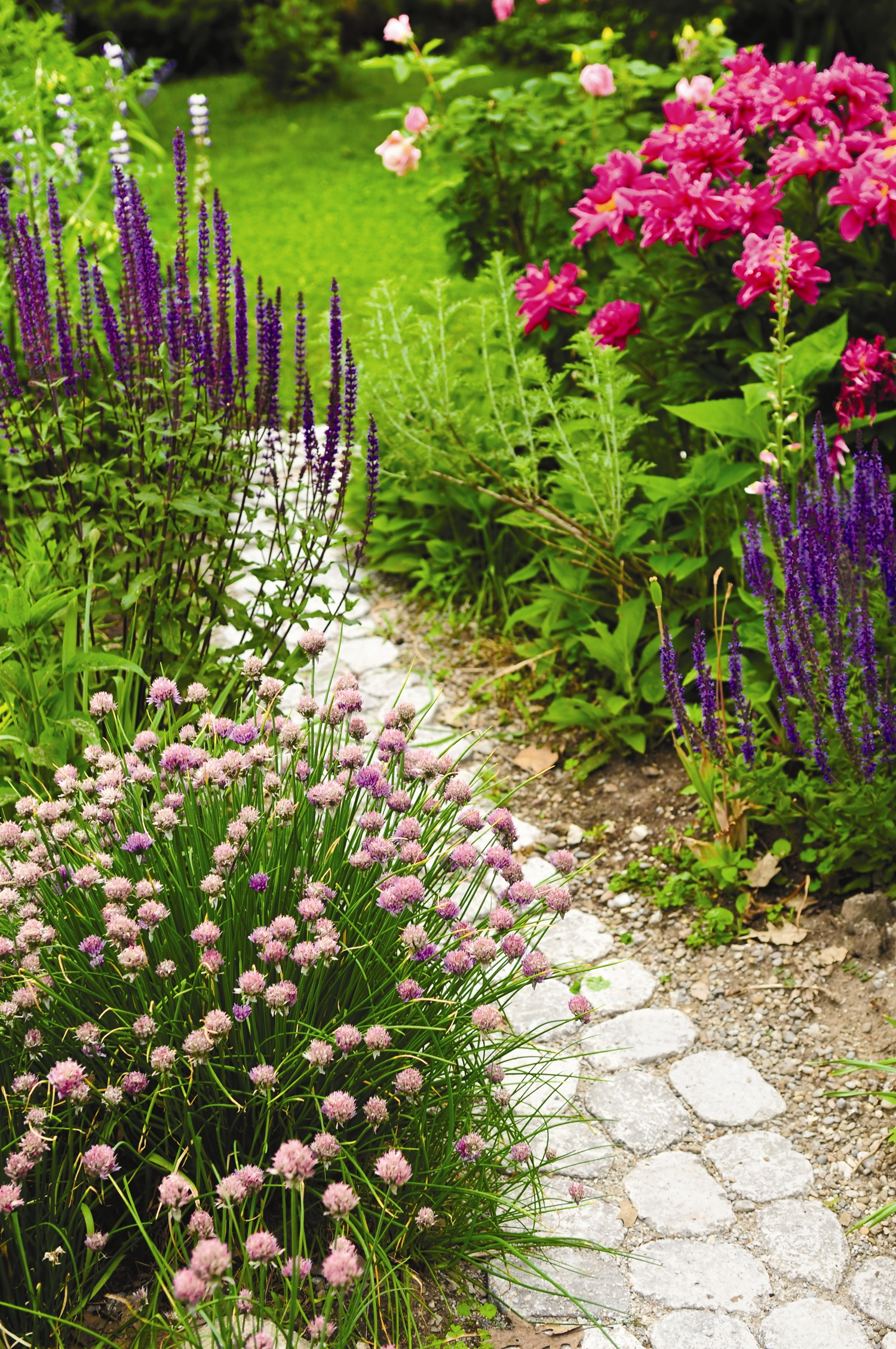 Perennial garden ideas magazine photograph new england gar for Native plant garden designs