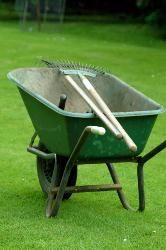 Lawn care that is good for your lawn, your family & the environment - photo by Freephoto.com
