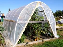 A hoop house promotes abundant growth of warm weather crops in summer and extends the growing season for cool weather crops in spring and fall.