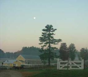 Moon in the Morning, photo by Susan Ticehurst
